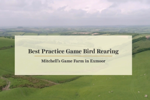 Best Practice Game Bird Rearing